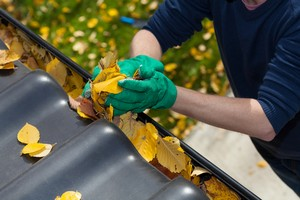 Gutter Cleaning in Hampstead